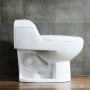 One-piece Toilet – RC010 – 7 (White) 750