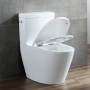 One-piece Toilet – R361 – 3 主圖