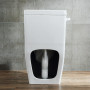 One-piece Toilet – R361 – 6 主圖