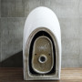One-piece Toilet – R362 – 7 主圖