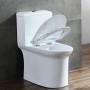 One-piece Toilet – R363 – 3 主圖