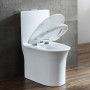 One-piece Toilet – R365 – 2 主圖