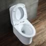 One-piece Toilet – R365 – 3 主圖