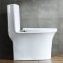One-piece Toilet – R365 – 4 主圖