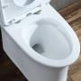 One-piece Toilet – R365 – 6 主圖