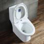 One-piece Toilet – R366 – 4 主圖