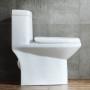 One-piece Toilet – R366 – 5 主圖