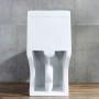One-piece Toilet – R366 – 6 主圖