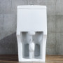 One-piece Toilet – R367 – 6 主圖