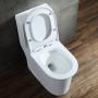 One-piece Toilet – R381 – 4 主圖