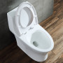 One-piece Toilet – R383 – 4 主圖