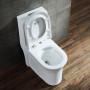 One-piece Toilet – R891 – 4 主圖