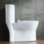 One-piece Toilet – R892 – 5 主圖
