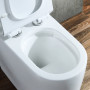 One-piece Toilet – R893 – 3 主圖