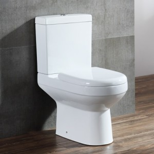 Two-piece Toilet – R667 – 2